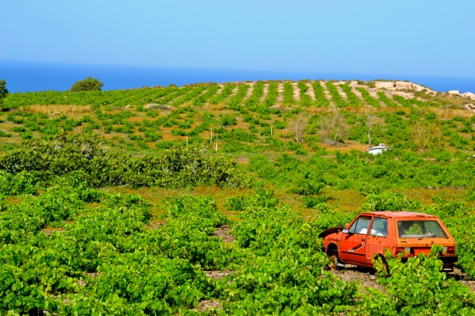 abandoned car in big field, Naxos Island, Greece