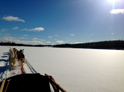 Dogsledding across the lake...an incredible sound.