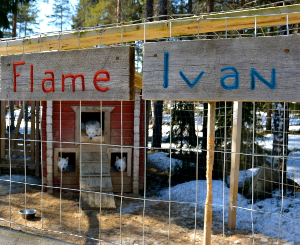 Casa de Flame and Ivan, one of the old married couples. Their sons, Loiste and Liekke still live at home.