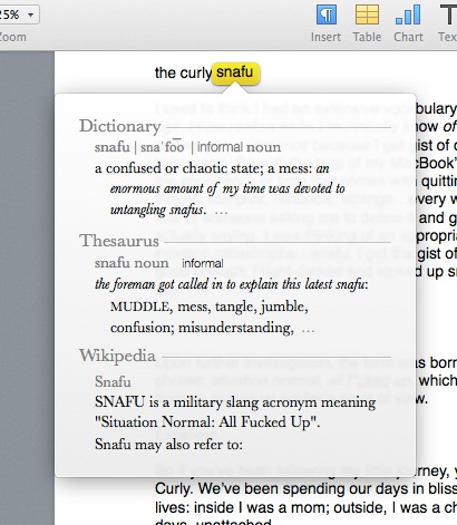 my macbook's definition of snafu