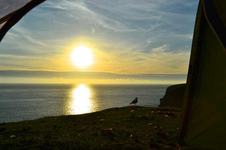 Sunset shared with a seagull