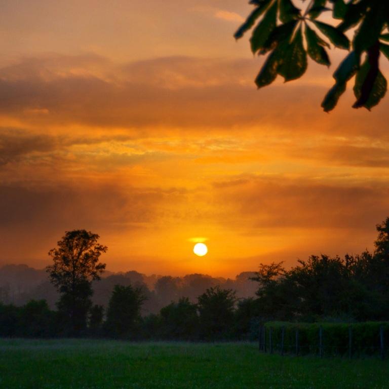 sunrise on the farm, Emly, Ireland