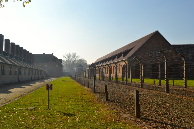 Barbed wire and barracks. Auschwitz I.