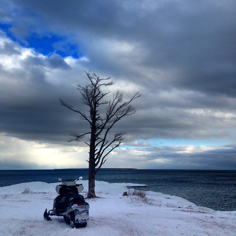 My favorite tree in High Rock Bay, Copper Harbor, Upper Michigan
