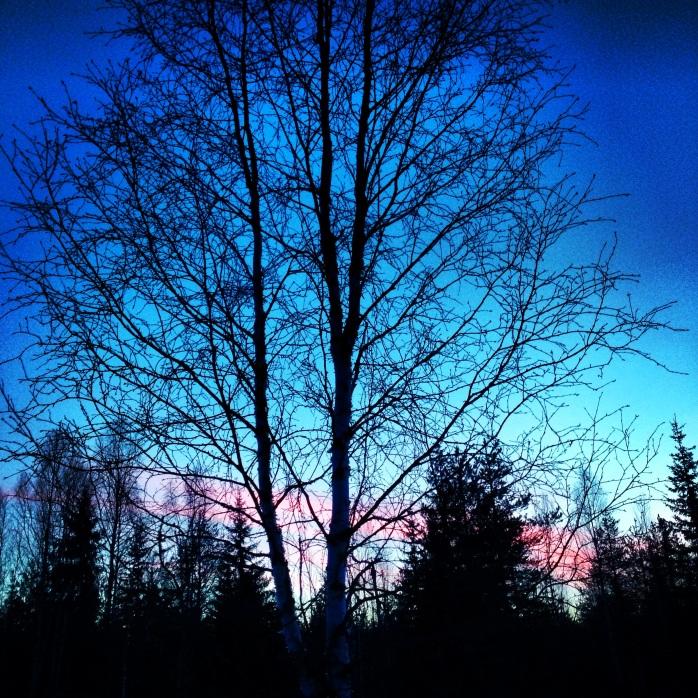 Finland, 2014